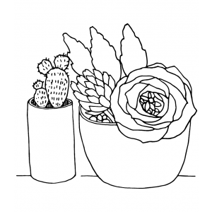 Catherine Scanlon Cling Mount Stamp - Potted Succulents AGC3-2847