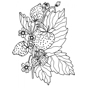 Catherine Scanlon Cling Mount Stamp - Strawberry AGC2-2787