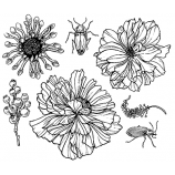 Nicole Tamarin Cling Mount Stamp Set - Fancy Florals NT-003