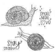 Catherine Scanlon Cling Mount Stamp Set - Colorful Snails CSCS-2812