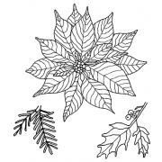 Catherine Scanlon Cling Mount Stamp Set - Pointsettia CSCS-2764