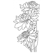 Catherine Scanlon Cling Mount Stamp - Chrysanthemum Trio AGC3-2744