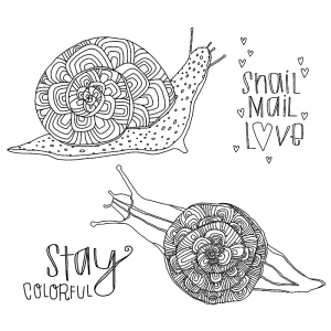 Catherine Scanlon Cling Mount Stamp Set - Colorful Snails CSCS-2812
