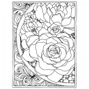 Catherine Scanlon Cling Mount Stamp - Framed Succulents AGC3-2826