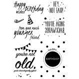 Words to the Rescue Clear Stamps - Getting Older #2 SFC025