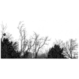 Suzanne Carillo Single Cling Mount Stamp - Field of Trees AGC3-2565