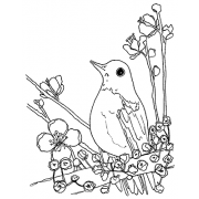 Catherine Scanlon Cling Mount Stamp - Bird AGC3-2746