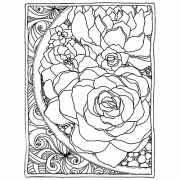 Catherine Scanlon Cling Mount Stamp - Framed Succulents AGC3-2826