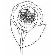 Catherine Scanlon Cling Mount Stamp - Ranunculus AGC3-2852